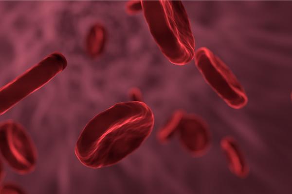 Ministério da Saúde garante R$ 1,3 bilhão para tratamento de hemofílicos