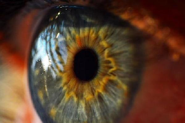 Pesquisadores descobrem que droga usada para tratar problemas oculares 'não traz benefícios'