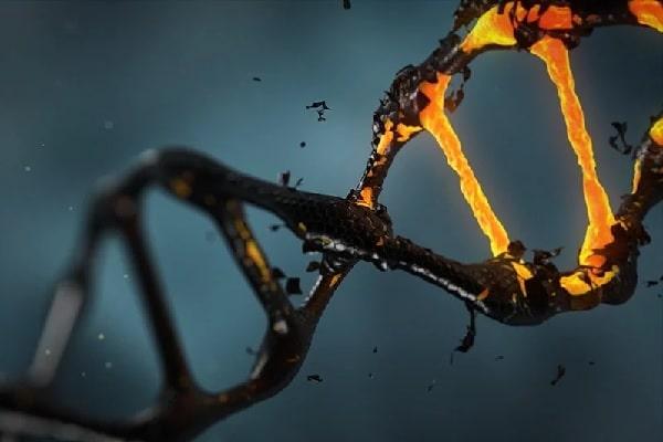 Laudo farmacogenético: a indicação de medicamentos com base na análise do DNA do paciente